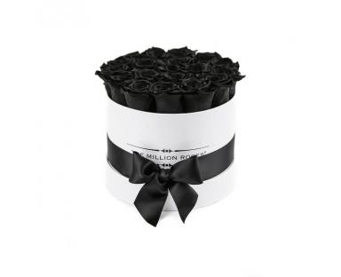 Black  Roses in White Box