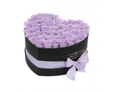 Purple Roses in a Black Heart Box