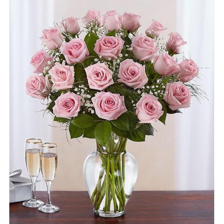 Pink Roses Elegance 20-100 Stems