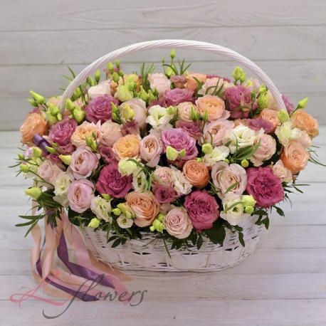 Blossoms Flower