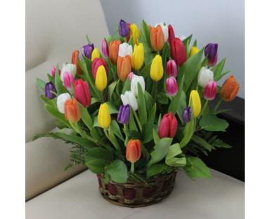 40 Mix Tulips arrangement in basket