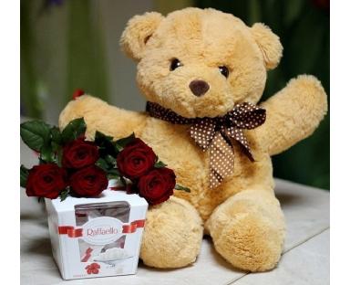 Red Roses with Raffaello Ferrero and Teddy Bear gift set