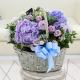 Blue Hydrangea with Purple Roses in basket