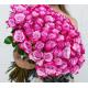 100 Purple Roses