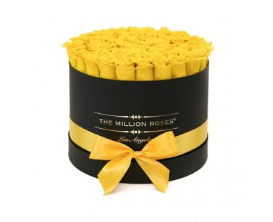 Yellow Roses in Black Box