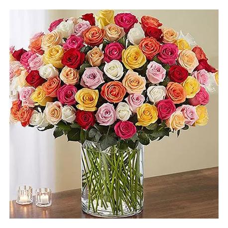 100 Multicolor Roses in Vase